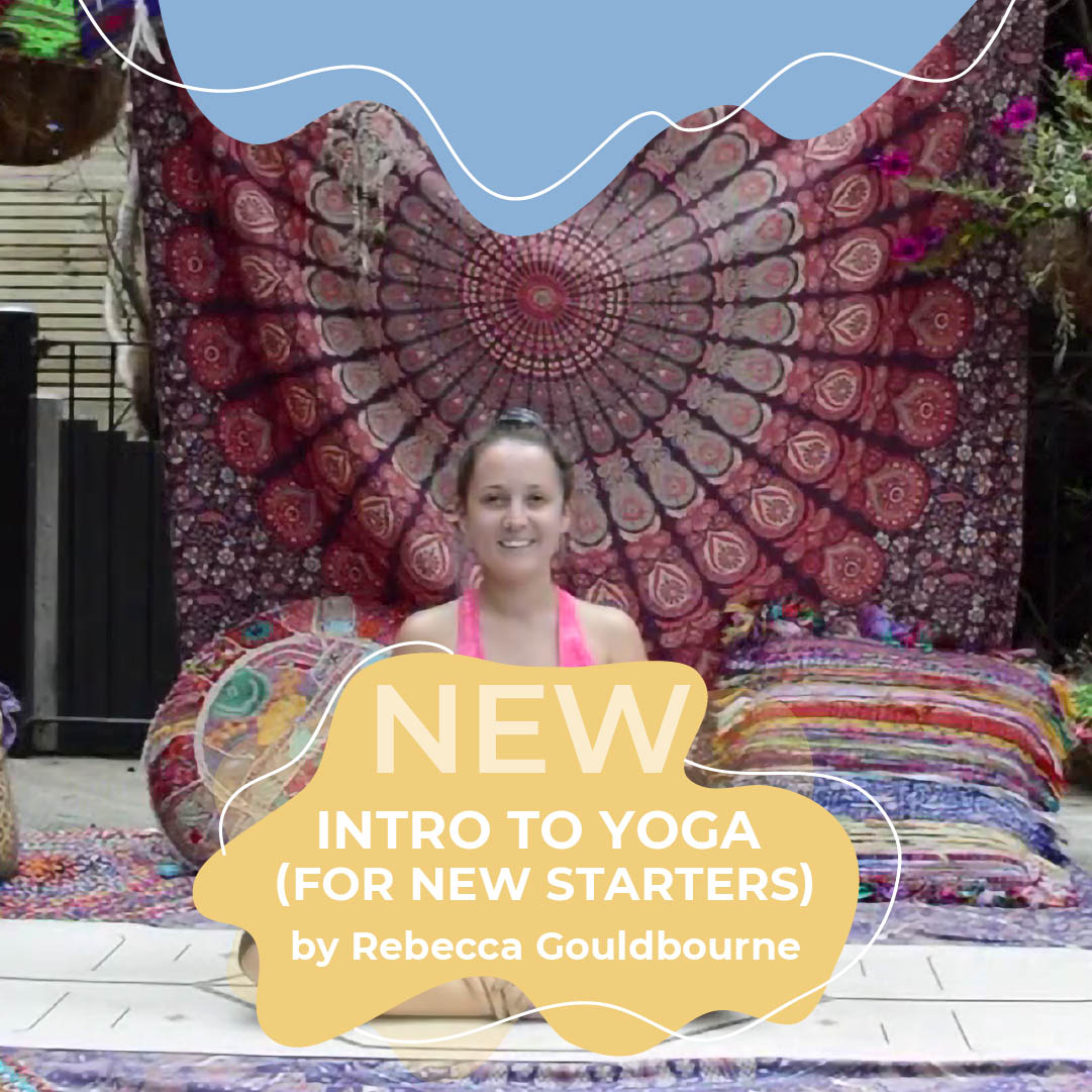 Intro to yoga with Becca